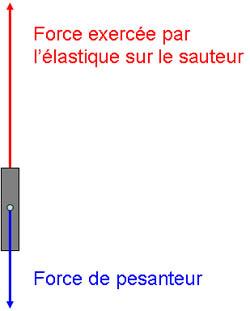 1cf93caf1bab 2) Sur le graphique (figure 1), indiquez le temps correspondant au point le  plus bas du saut.